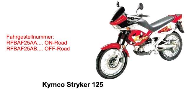 Stryker 125